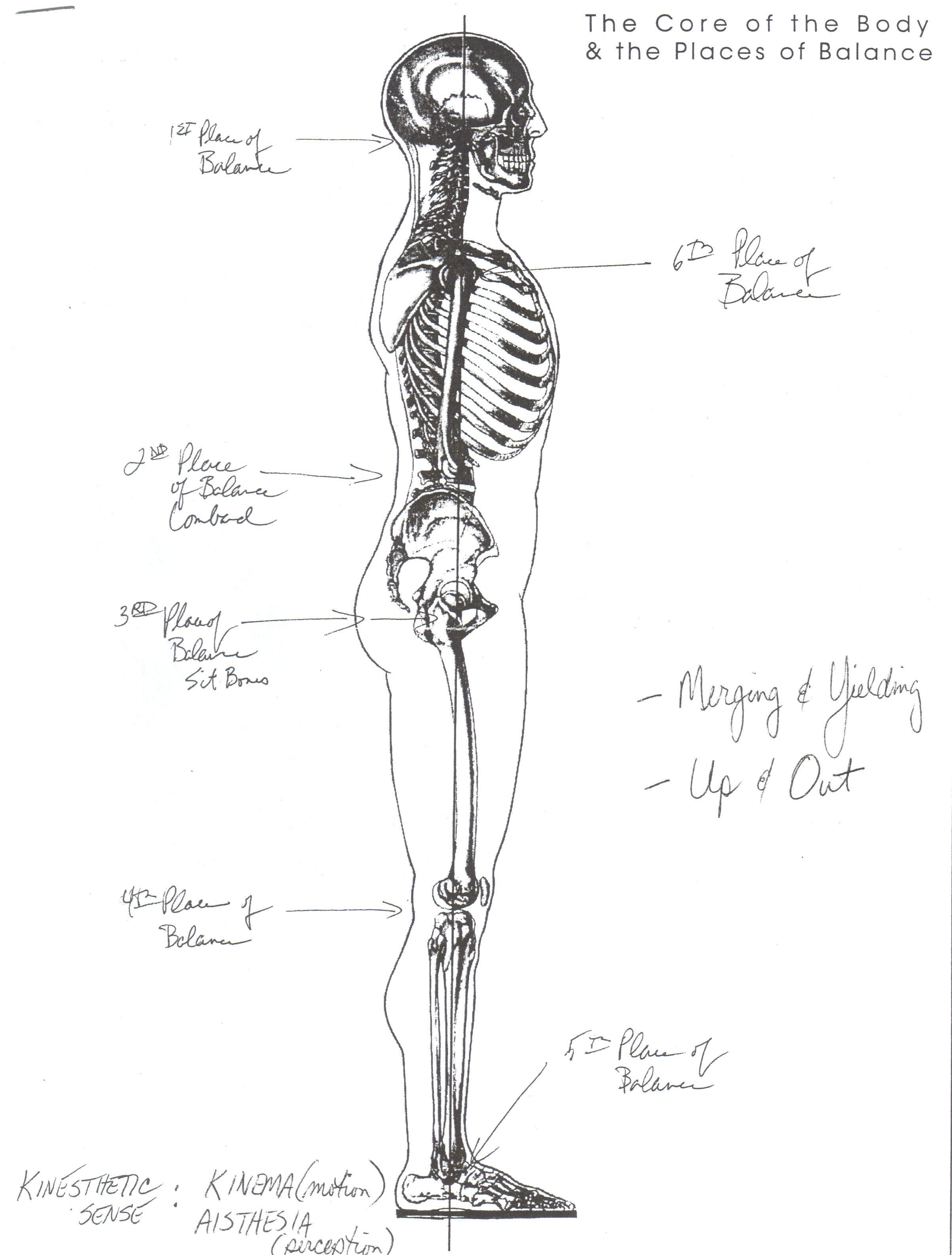 Body Alignment – George Corbett